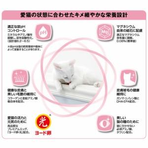 メディファス 美しい毛艶 1〜10歳 チキン&フィッシュ味 1.4kg + 1歳〜の成猫用パウチ2袋おまけ付
