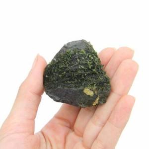 (水草)巻きたて フジウロコゴケ 風山石SS(無農薬)(3個) 北海道航空便要保温