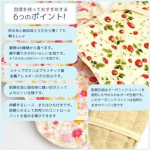 布ナプキン オーガニック ホルダー Mサイズ 一体型 ふつうの日 昼用 ナプキン レギュラーサイズ レギュラーサイズ ( メール便OK )