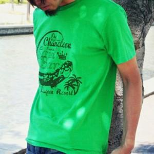 [メール便]deuse限定 メンズコラボTシャツ 「Chameleon」 ANDE-007 vani0003