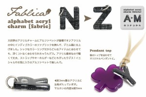 Fablica 布が挟まったデザイン/アクセサリーパーツ/アルファベットアクリルチャーム[N〜Z]【メール便可03】