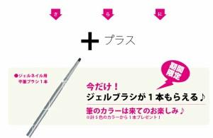 ジェルネイル【LED/UV両対応】SHANTI GEL(シャンティジェル) トップジェル&ベースジェルセット 30g