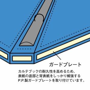 リヒトラブ カルテブック 厚型タイプ A4S 4穴 ライトブルー HB437-2