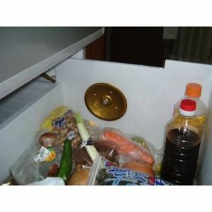 スイト びっくり 冷蔵庫用 パラボラニオイキラー