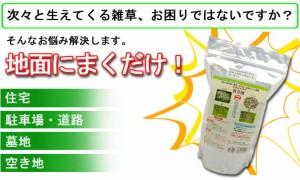 ウィードブライト(除草剤)