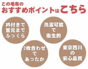 【送料無料】東京西川 衿付き 2枚合わせ ふっくら ボリューム マイヤー毛布 シングル 140×200cm (あったか 暖か もうふ 掛け毛布 西川)