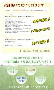 【国産】【即納】い草シーツ(寝ござ)『 球磨川 』熊本県八代産シングルサイズい草シーツ 寝ござ シングル 国産 い草 シーツ