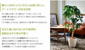 【g46004】観葉植物 光触媒 造花 パキラ グリーン 人工植物 消臭 抗菌 防菌 ホルムアルデヒド %OFF 植物 人工 タバコ ペット アートフラ
