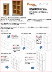 すき間収納棚(幅25cm)『NEWプレージ6025』 幅25cm 奥行き29.4cm 高さ60cm 送料無料 収納 隙間 すきま スキマ カラーボックス