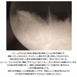 【送料無料・即納】Tempo Drop[テンポ ドロップ]【置物 オブジェ 飾り ナチュラル 北欧 おし