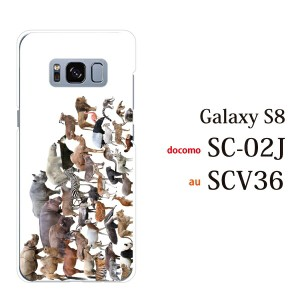 スマホケース SCV36 Galaxy S8 scv36 ギャラクシー カバー ハード/ケース/au/クリア アニマルズ動物 キリン ライオン