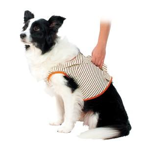ペティオ 老犬介護用 補助機能付ベスト 2L(中・大型犬用)