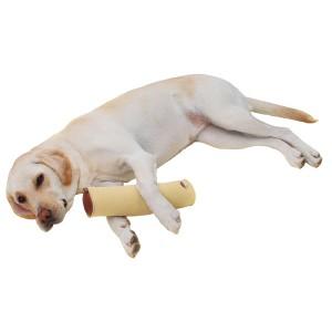 ペティオ 老犬介護用 床ずれ予防クッション スティック型 大