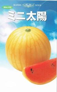 神田育種農場 スイカ ミニ太陽 約11粒 【郵送対応】