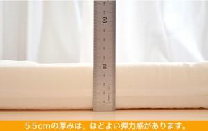 ベビー マットレス | サンデシカ ベビー用 固綿敷きマットレス(二つ折りタイプ) ベビーサイズ 70×120×5.5センチ