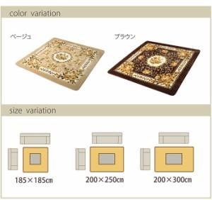 ふっくら エレガント ラグ 『エメル』 ブラウン 200x300cm(代引不可)【送料無料】