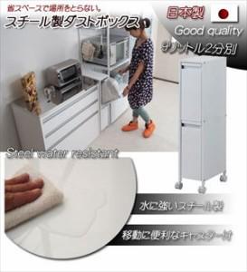 スチール製ダストボックス 9リットルタイプ2分別【送料無料】