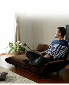 日本製 国産 カウチソファー ソファ 2人掛けソファ 二人掛けソファー 「KAN PLUS」 コンパクトカウチソファ カウチソファA01(代引不可)【
