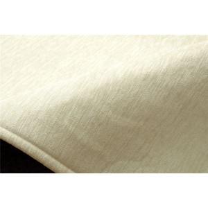 ラグ 洗える 無地カラー 選べる7色 『モデルノ』 アイボリー 約200×250cm