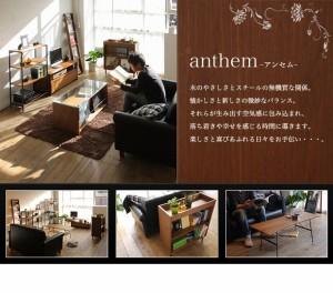 スタンドミラー 全身 雑誌収納一体型ミラー anthem アンセム【送料無料】(代引き不可)