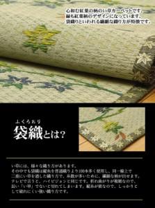い草花ござカーペット 『嵐山』 本間6畳(約286.5x382cm)【送料無料】【代引き不可】
