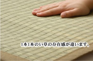 純国産 沖縄ビーグの寝ござ 『ざわわ』 ダブル(約128×200cm)(代引不可)【送料無料】