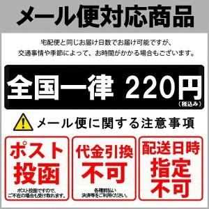 【ネコポス便送料無料】 MEGADETH LOGO Tシャツ 【オフィシャル】