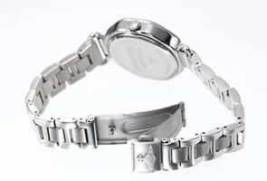 ヴィヴィアンウエストウッド 腕時計 レディース ウェストベリー シルバー VV101SL
