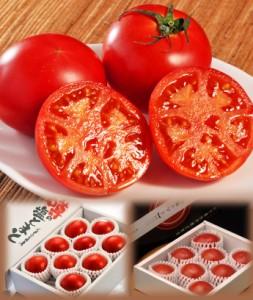 熊本・八代産 塩トマト 8〜16玉 約700g ☆