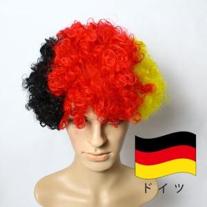 アフロヘア 国別 Afro hair 国旗柄  レインボー アフロ ヘアー かつら カツラ サッカー応援グッズ サポーターグッズ カラー 仮装 コスプ