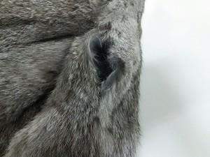 シュガーローズ SugarRose ブルゾン サイズ【F】 レディース グレー 冬物/ラビットファー【中古】
