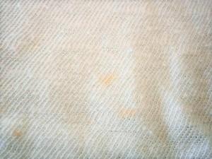 アールバイフォーティーファイブアールピーエム R by45rpm 半袖カットソー サイズ1 S レディース 美品 ライトブルー×イエロー【中古】