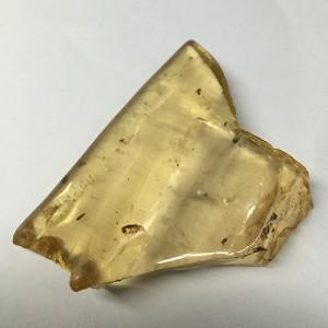 化石 マダガスカル産 虫入り コパル アンバー iw160227a01