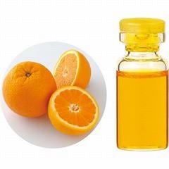 生活の木 TREE OF LIFE エッセンシャルオイル(精油) オレンジスイート 3ml アロマ ESSENNTIAL OIL