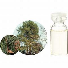 生活の木 TREE OF LIFE エッセンシャルオイル(精油) パイン 3ml アロマ ESSENNTIAL OIL