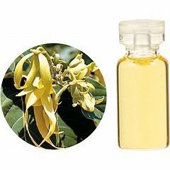 生活の木 TREE OF LIFE エッセンシャルオイル(精油) イランイラン・エクストラ 3ml アロマ ESSENNTIAL OIL