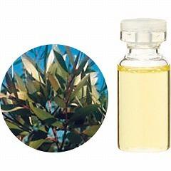 生活の木 TREE OF LIFE エッセンシャルオイル(精油) ニアウリ・ネロリドール 10ml アロマ ESSENNTIAL OIL