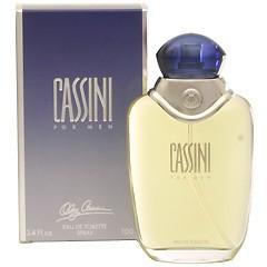 オレッグ カッシーニ OLEG CASSINI カッシーニ メン EDT・SP 100ml 香水 フレグランス OLEG CASSINI POUR HOMME
