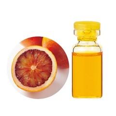 【生活の木 生活の木】生活の木 エッセンシャルオイル(精油) ブラッドオレンジ 50ml TREE OF LIFE 送料無料 アロマ ESSENNTIAL OIL