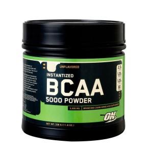 9%OFF 送料無料 健康体力研究所 BCAA5000パウダー 336g KENTAI スポーツ・アウトドア