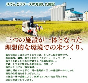 【送料無料】 山形米 精米 10kg (5kg×2袋) 【山形県産100%】