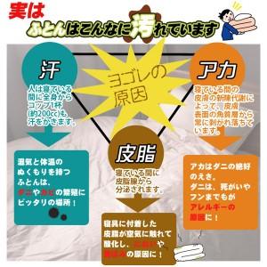 【日本製】ダクロン(R)クォロフィル(R)アクア中綿使用 洗える掛け布団 ジュニアサイズ