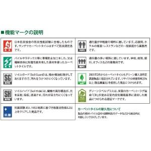 ループ タイルカーペット サンゲツ DT-5850 レオンサイズ 50cm×50cm 12枚セット色番 DT-5852 【防炎】 【日本製】