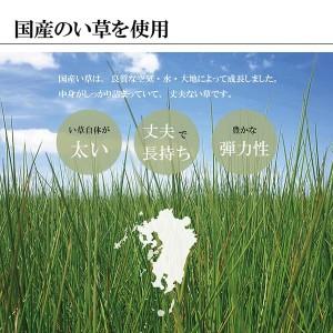 【福岡県品評会最優秀賞】純国産(日本製) い草ラグ 『D×鍋島』 ブラック 約191×191cm(裏:不織布)
