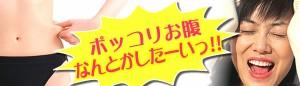 【4,200円で送料無料】ゲルマ・ウェーブパワフル腹巻(女性用)