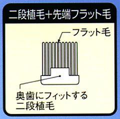 〔話題の商品〕水だけで磨ける!歯磨剤不要!!「松鉱石イオン歯ブラシ」3本セット(3色)