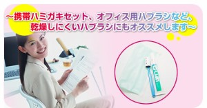 歯ブラシ用 除菌キャップ(4個入)