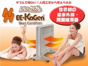 送料無料■遠赤外線両面ヒーターいいかげん (Best-Condition) DHR-800(EH66-10) 遠赤パネルヒーター
