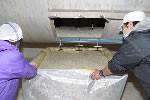井上酒造 長期貯蔵麦焼酎 ★りさいたる 30°720ml