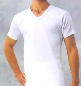BVDデラックスV首半袖Tシャツ S/L